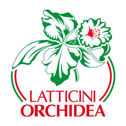 Latticini Orchidea